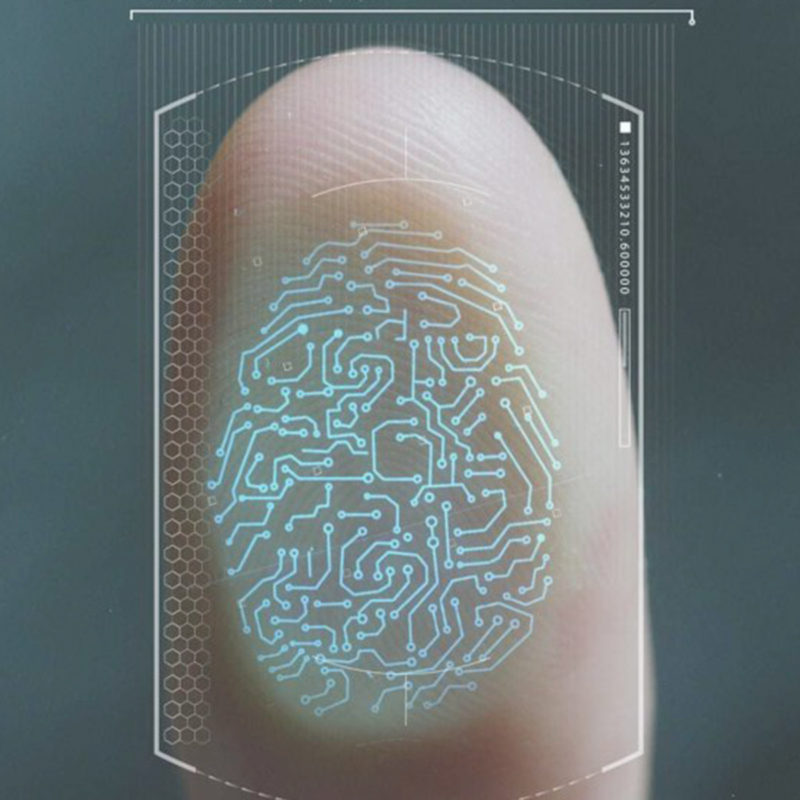 Biometrisk data